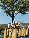 Dscf4194